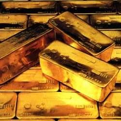 mucho oro